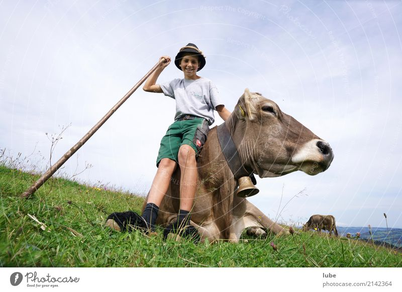 shepherd boy Tourism Mountain Agriculture Forestry 1 Human being Environment Nature Landscape Summer Field Alps Animal Pet Farm animal Cow Happiness Joy