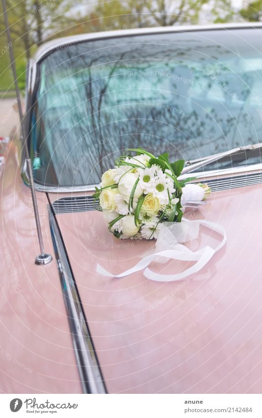 Wedding Cadillac Feasts & Celebrations Car Vintage car Bouquet Esthetic Exceptional Retro Trust Together Loyalty Romance Endurance Beginning Relationship