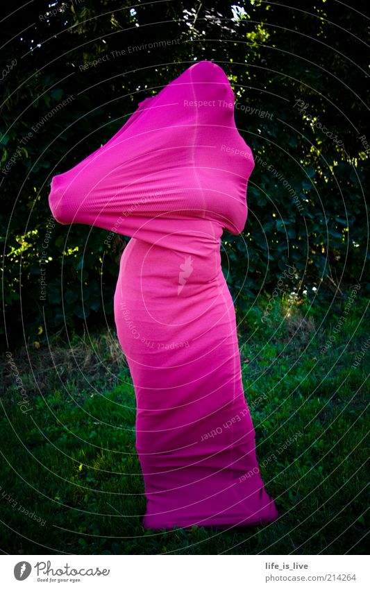 Human being Nature Life Style Art Fear Pink Exceptional Uniqueness Mask Mysterious Creativity Carnival Statue Hide Anonymous