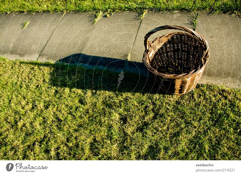 Nature Autumn Grass Lanes & trails Garden Stand Empty Beautiful weather Agriculture Harvest Carrying Containers and vessels Few Full Basket Agricultural crop