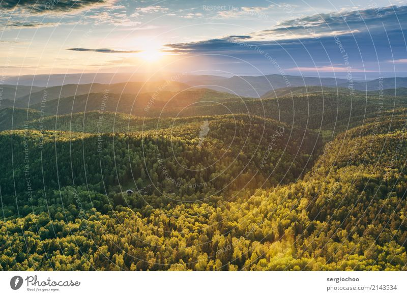 sunray above the forest Sky Nature Summer Sun Landscape Clouds Far-off places Forest Mountain Environment Autumn Spring Tourism Freedom Horizon Hiking