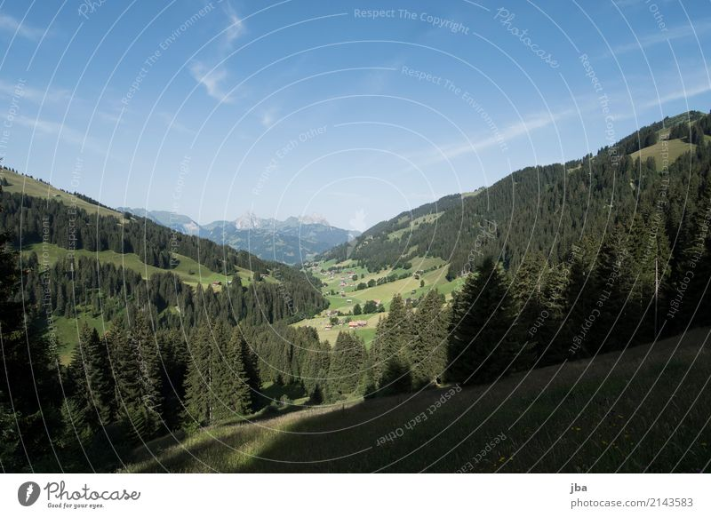 Turbachtal Well-being Relaxation Calm Leisure and hobbies Vacation & Travel Trip Freedom Cycling tour Summer Mountain Hiking Sports Fitness Sports Training