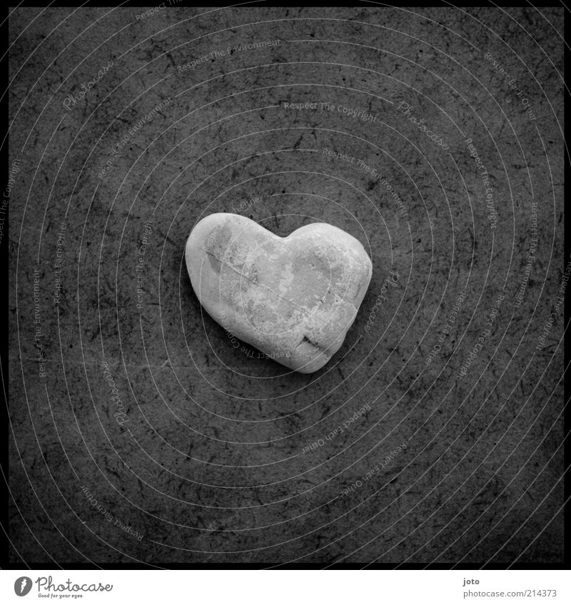 for you Stone Heart Happy Esthetic Uniqueness Hope Love Calm Emotions Heart-shaped Gray Sincere Structures and shapes Lie Infatuation Blemish Loyalty Trust