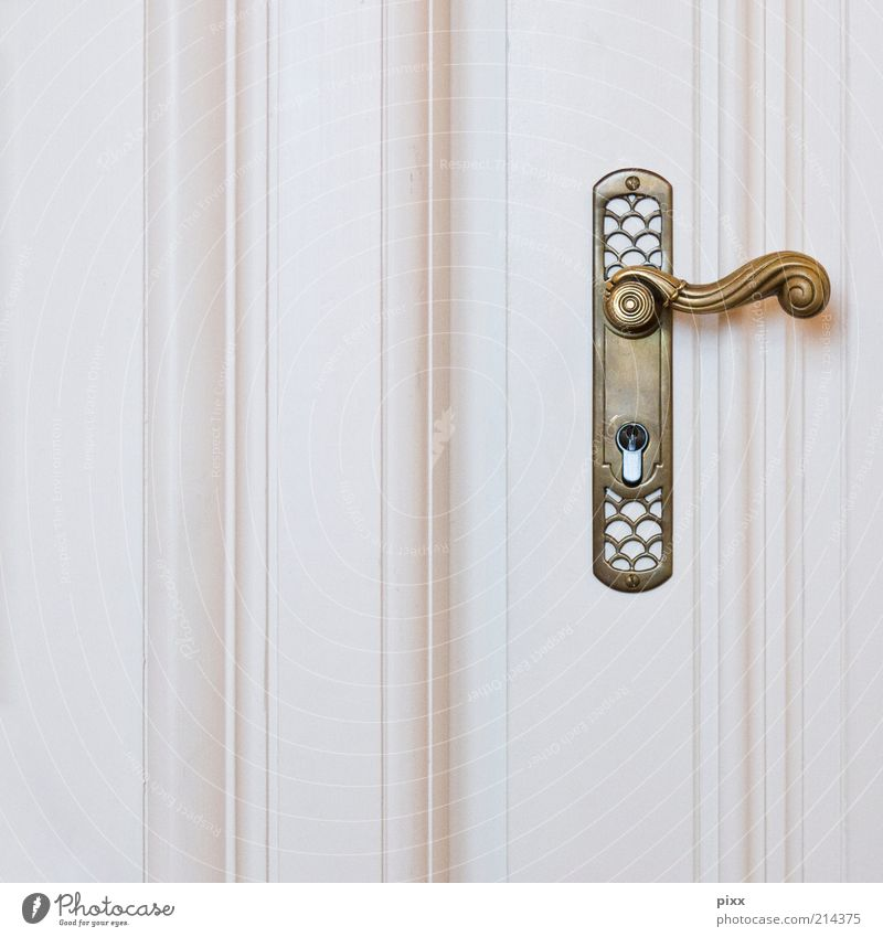 for jack blowers Lifestyle Elegant Style Door Door handle Wood Metal Gold Esthetic Historic Kitsch White Colour photo Subdued colour Interior shot Detail