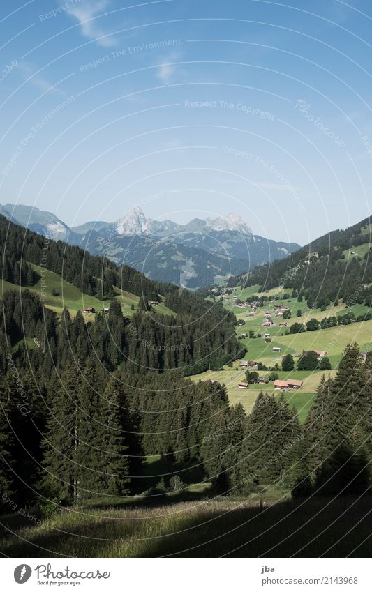 Turbachtal Life Well-being Leisure and hobbies Trip Far-off places Cycling tour Summer Mountain Hiking Sports Sporting Complex Nature Landscape