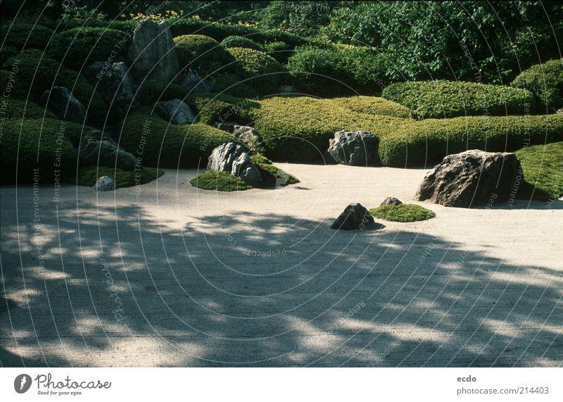 Japaneserockgarden White Tree Green Plant Summer Vacation & Travel Calm Garden Gray Stone Warmth Landscape Contentment Design Elegant Rock