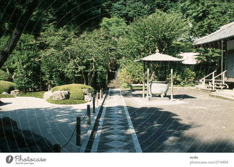 Japanesegardenart Nature Beautiful White Tree Green Summer Vacation & Travel Calm House (Residential Structure) Garden Gray Stone Lanes & trails Warmth Landscape Contentment