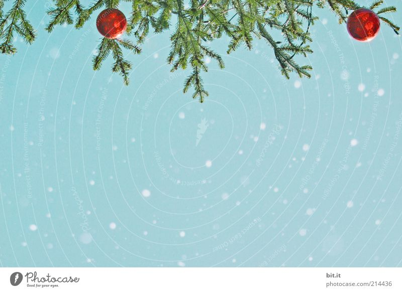 Sky Christmas & Advent Blue Beautiful Red Winter Snow Snowfall Ice Glass Background picture Crazy Frost Romance Decoration