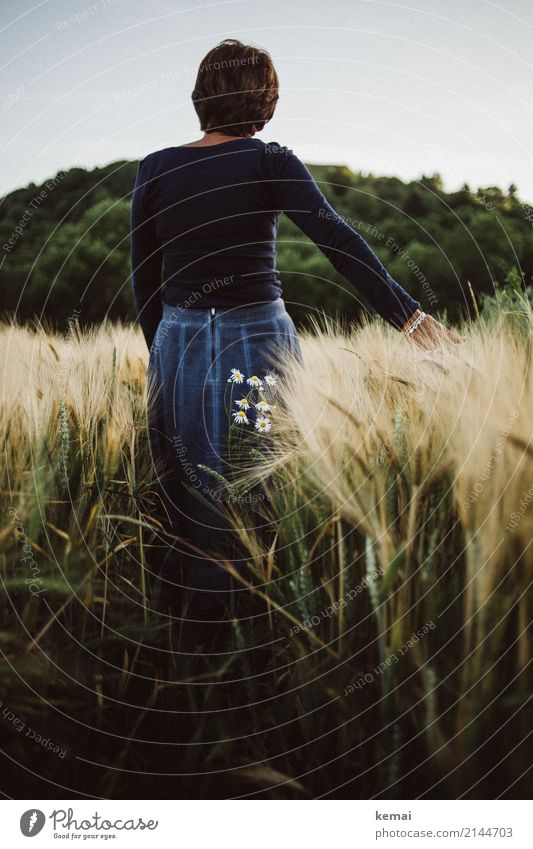 Lost in thought in the field Lifestyle Harmonious Well-being Contentment Senses Relaxation Calm Leisure and hobbies Trip Adventure Freedom Human being Feminine