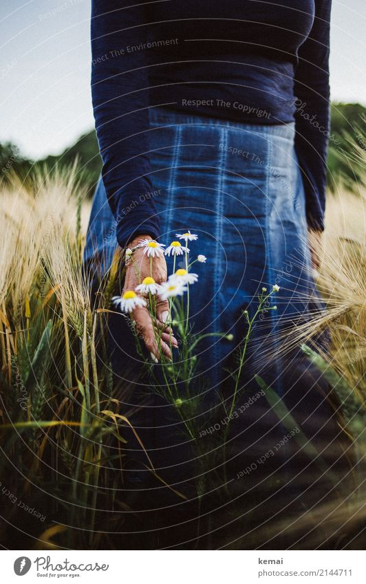 Flowers and a skirt in the field Lifestyle Style Harmonious Well-being Contentment Senses Relaxation Calm Leisure and hobbies Trip Freedom Human being Feminine