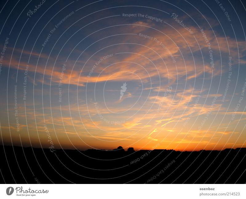 Sky Summer Clouds Far-off places Landscape Esthetic Sunrise Beautiful weather Dusk Copy Space