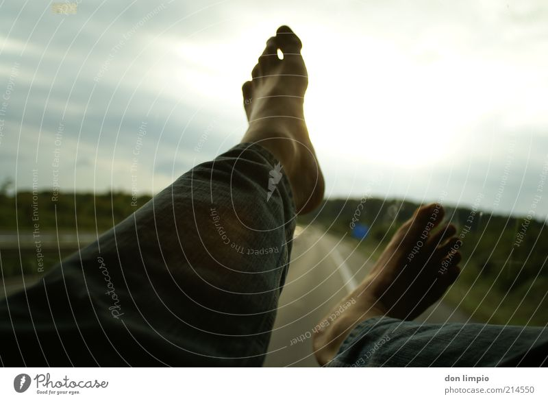 Human being Man Adults Relaxation Feet Horizon Contentment Glass Flying Trip Masculine Free Aviation Crazy Jeans Highway