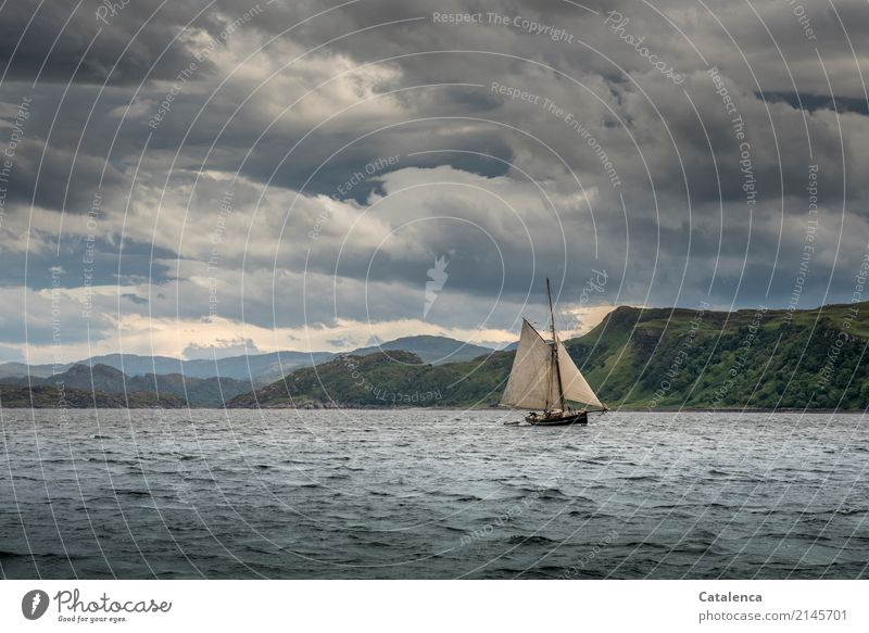 Firth of Lorn Summer Ocean Waves Sailing Sailing trip Sailboat Nature Water Sky Clouds Bad weather Mountain Coast Atlantic Ocean Movement Vacation & Travel