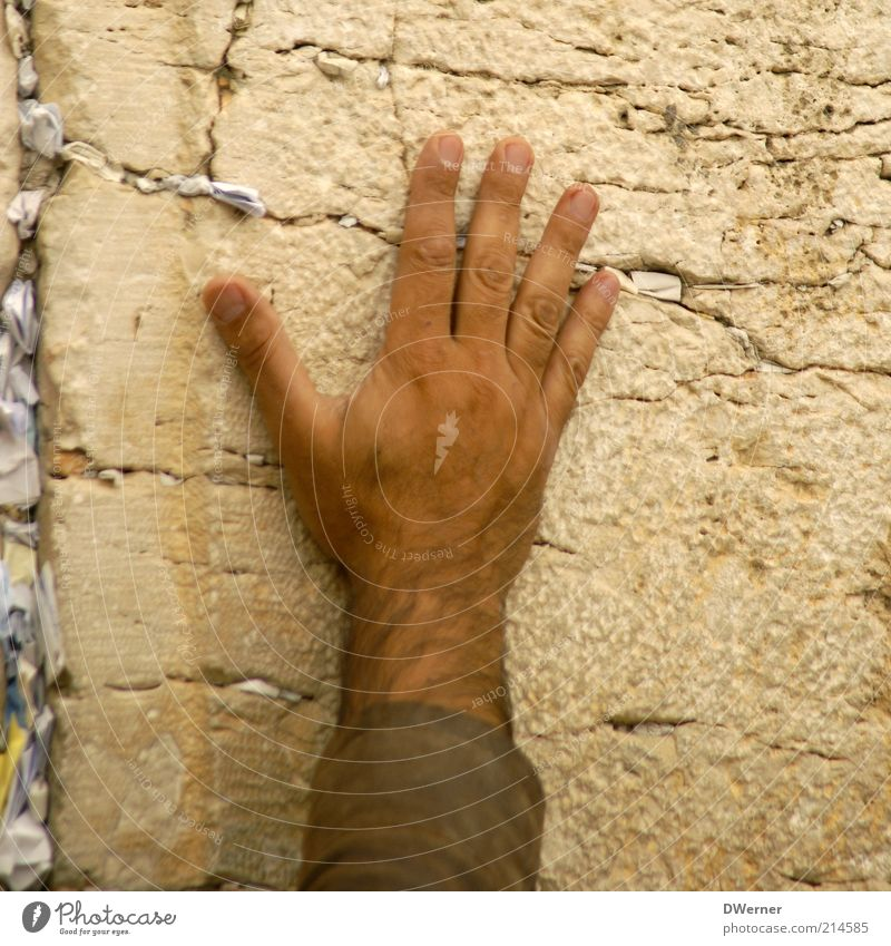 Human being Man Hand Old Calm Wall (building) Hair and hairstyles Stone Wall (barrier) Skin Adults Masculine Fingers Facade Israel Culture