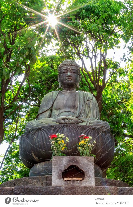 Hello friend! Tokyo Japan Asia Capital city Downtown Tourist Attraction Attentive Caution Serene Patient Calm Religion and faith Buddha Statue of Buddha Peace