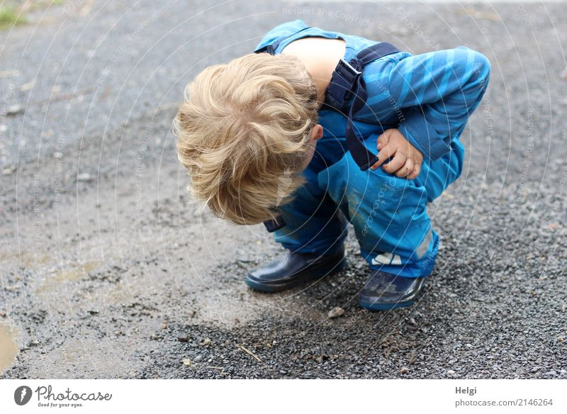 little boy squats on a rain-soaked path and looks down Human being Toddler Infancy 1 3 - 8 years Child Environment Nature Summer Bad weather Rain T-shirt