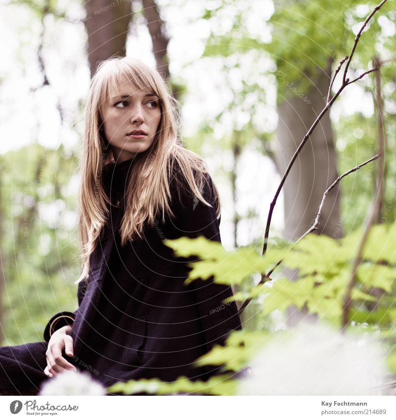 Human being Nature Youth (Young adults) Green Beautiful Tree Black Forest Adults Feminine Fashion Blonde Sit Natural Esthetic Young woman