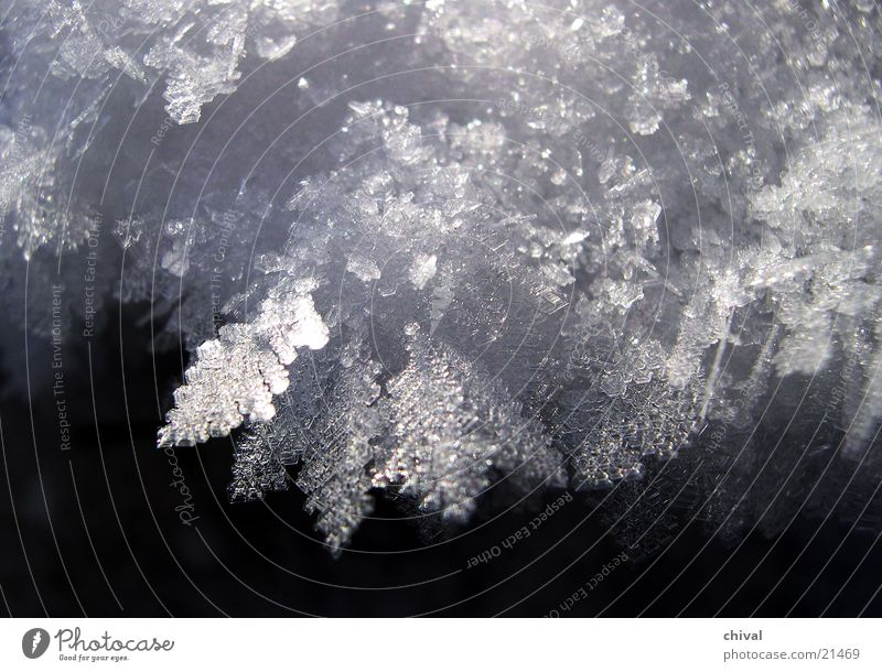 Sun Winter Cold Snow Ice Frost Frozen Freeze Crystal structure Hoar frost