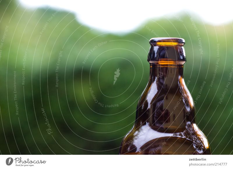 beer Beer Bottle Bottle of beer Empty Beverage Colour photo Neck of a bottle Brown 1 Neutral Background Deserted Copy Space left Copy Space top