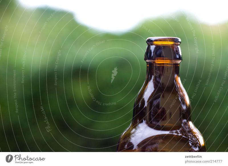Brown Glittering Empty Beverage Beer Bottle Alcoholic drinks Bottle of beer Neck of a bottle Glassbottle