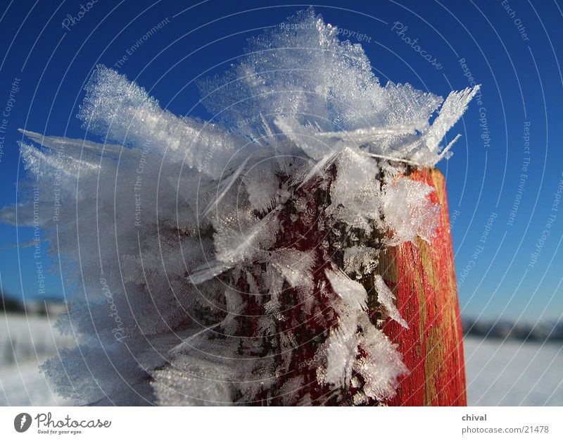 Pole with hoarfrost Winter Hoar frost Red White Cold Frozen Blue Crystal structure Snow Sky