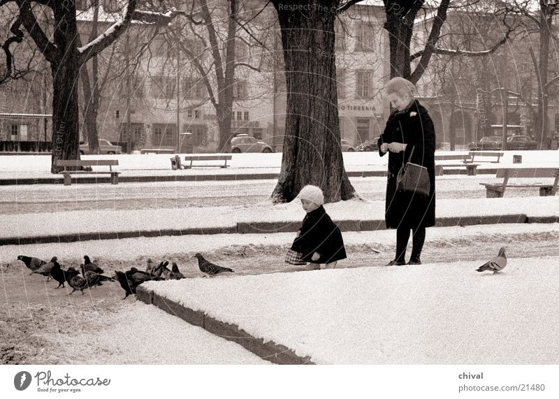 pigeon feeding Woman Child Pigeon Feeding Park Stuttgart Castle place
