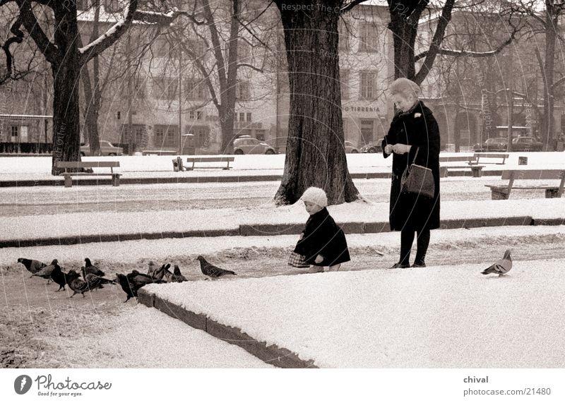 Woman Child Park Pigeon Stuttgart Feeding Castle place