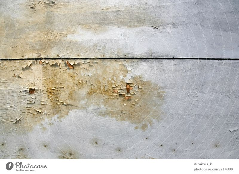 peeling paint Ruin Wood Old White Decline mold moldy Consistency fungus Background picture ceiling Moistened Humidity water stains Surface abandoned house