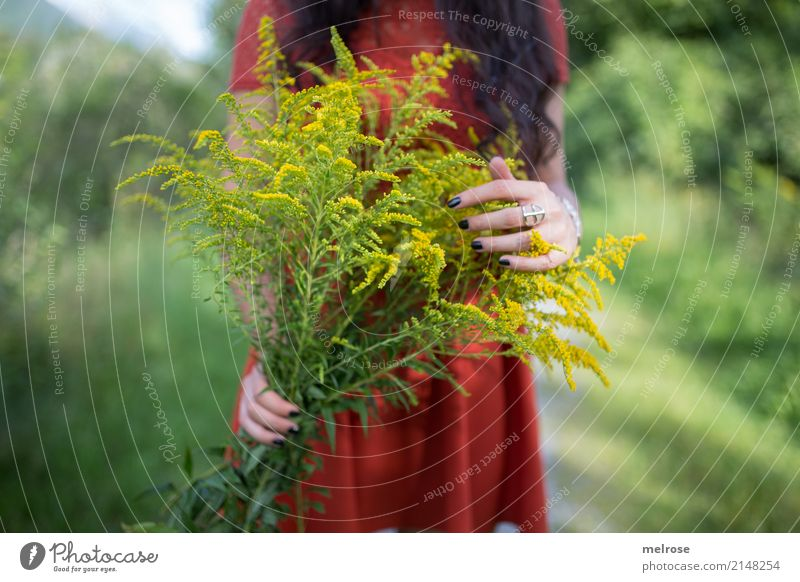 Human being Woman Nature Youth (Young adults) Plant Young woman Summer Green Landscape Hand Flower Yellow Lifestyle Blossom Emotions Grass