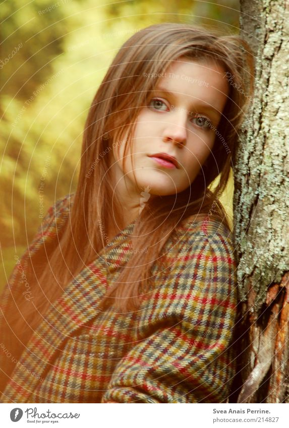 Human being Youth (Young adults) Beautiful Tree Face Adults Autumn Feminine Hair and hairstyles Style Think Fashion Brown Blonde Elegant Wild
