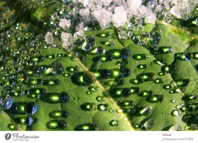 Water Sun Snow Drops of water Rope Sphere Lens Breakage Snow melt