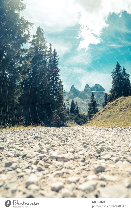 This way Adventure Summer vacation Mountain Hiking Environment Landscape Earth Air Sky Beautiful weather Alps Peak Deserted Discover Relaxation Walking