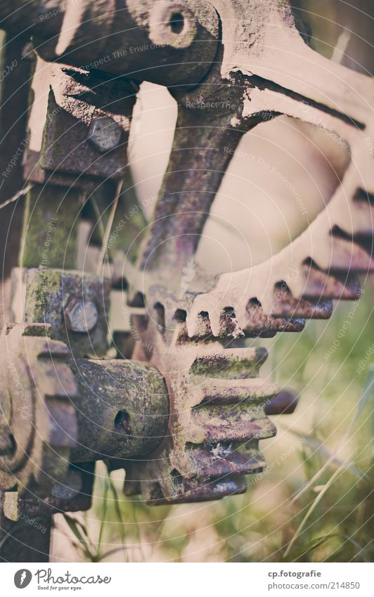 toothed wheels Industry Machinery Gearwheel Rust Screw Metal Old Hideous Gloomy Day Shallow depth of field Grass Decline Change Deserted