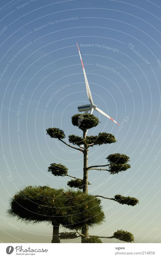green wind Energy industry Wind energy plant Environment Air Sky Beautiful weather Tree Rotate Tall Blue Green Calm Colour photo Exterior shot Day Blue sky