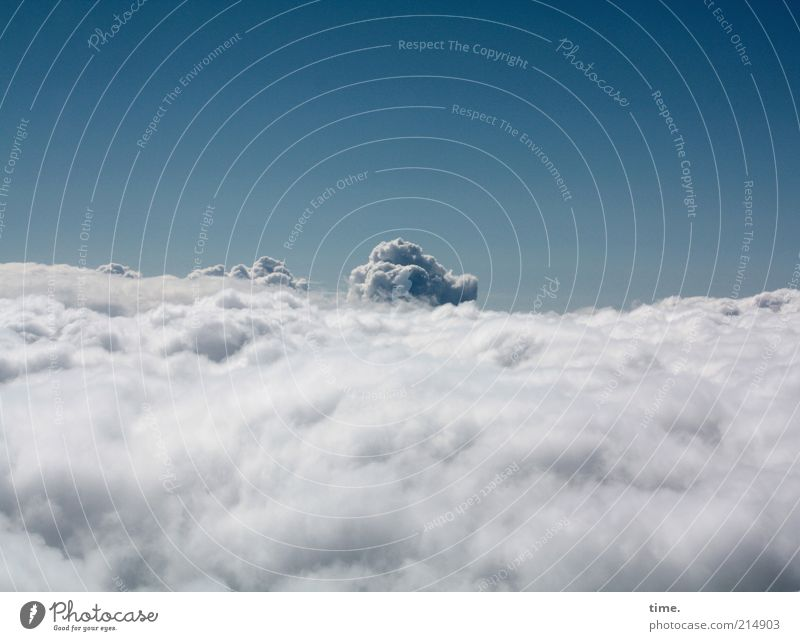 Cloud 7 Beautiful Far-off places Sky Clouds Horizon Bad weather Tall Uniqueness Cuddly Above Soft Blue Steam Wool Atmosphere Accumulation Exterior shot Deserted