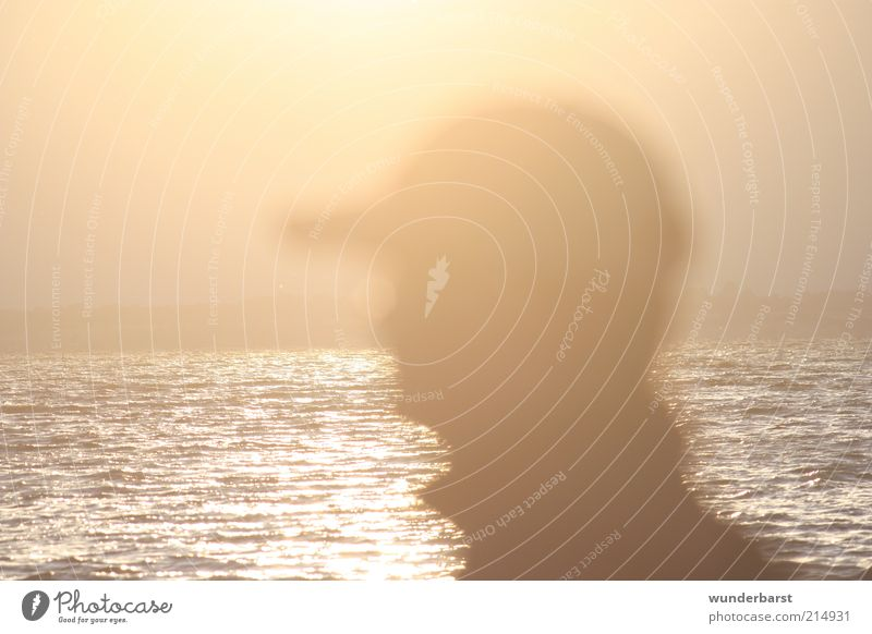 backlight Human being Head 1 Sunrise Sunset Sunlight Wait Colour photo Exterior shot Twilight Back-light Profile Baseball cap Silhouette Surface of water Ocean