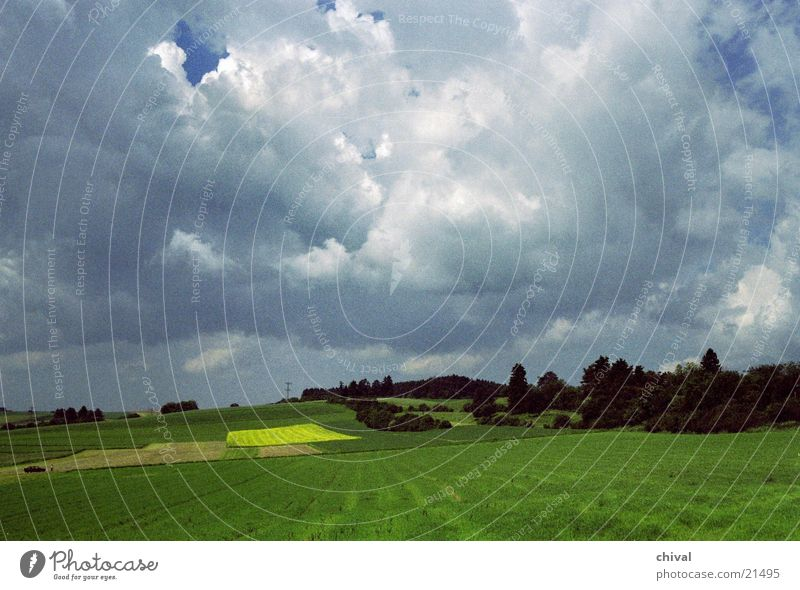 Sky Green Clouds Yellow Forest Lamp Meadow Mountain Field Canola
