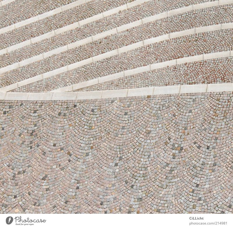 waves Earth Places Stone Line Esthetic Simple Brown Gray White Altenburg Paving stone Curved Colour photo Exterior shot Aerial photograph Pattern