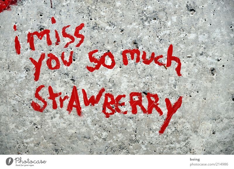 I miss you so much Strawberry Sign Characters Signage Warning sign Graffiti Emotions Romance Desire Exterior shot Miss Stone Red English Deserted
