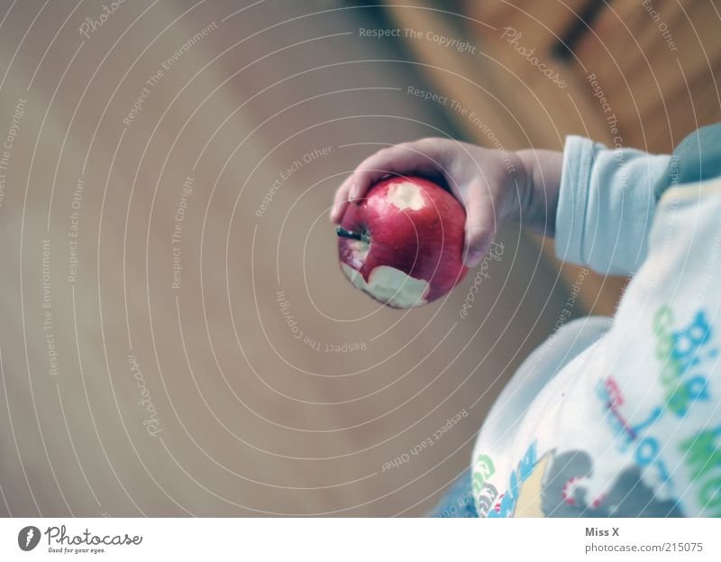 Human being Child Hand Small Eating Fruit Food Nutrition Sweet Apple Toddler Delicious Organic produce Sweater Bite Vegetarian diet