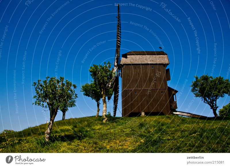 Windmill in Werder Tourism Trip Summer Summer vacation Environment Nature Landscape Sky Cloudless sky Tree Park Old Mill Historic Museum Miller Craft (trade)
