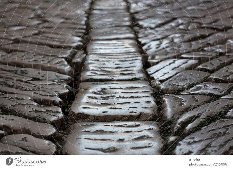 Old Street Dark Gray Stone Lanes & trails Glittering Authentic Under Illuminate Past Dry Paving stone Seam Rovinj