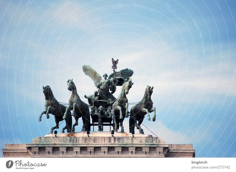 Sky Blue Clouds Animal Europe Might Horse Italy Statue Sculpture Capital city Tourist Attraction Sightseeing Rome Court building Horse-drawn carriage