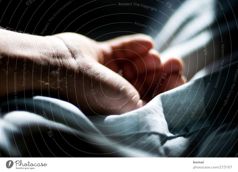 Resting Hand Well-being Relaxation Calm Living or residing Flat (apartment) Bed Human being Masculine Man Adults Life Skin Fingers 1 45 - 60 years Lie Sleep