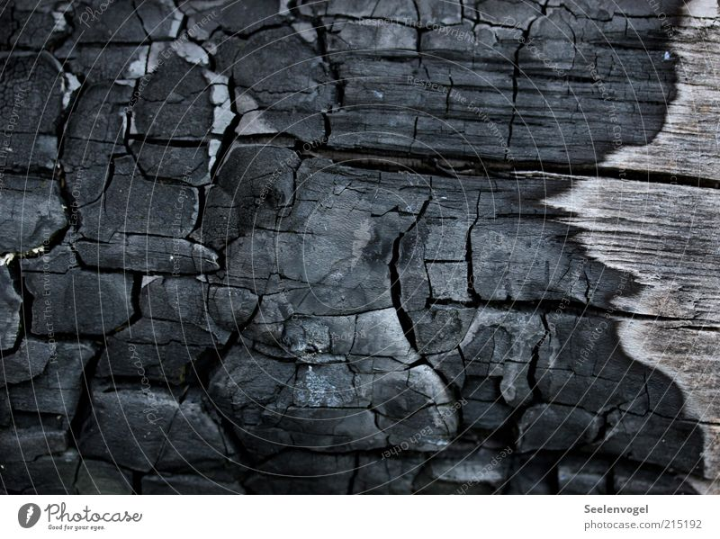 Black Wood Warmth Line Background picture Threat Transience Burn Crack & Rip & Tear Destruction Surface Macro (Extreme close-up) Damage Firewood