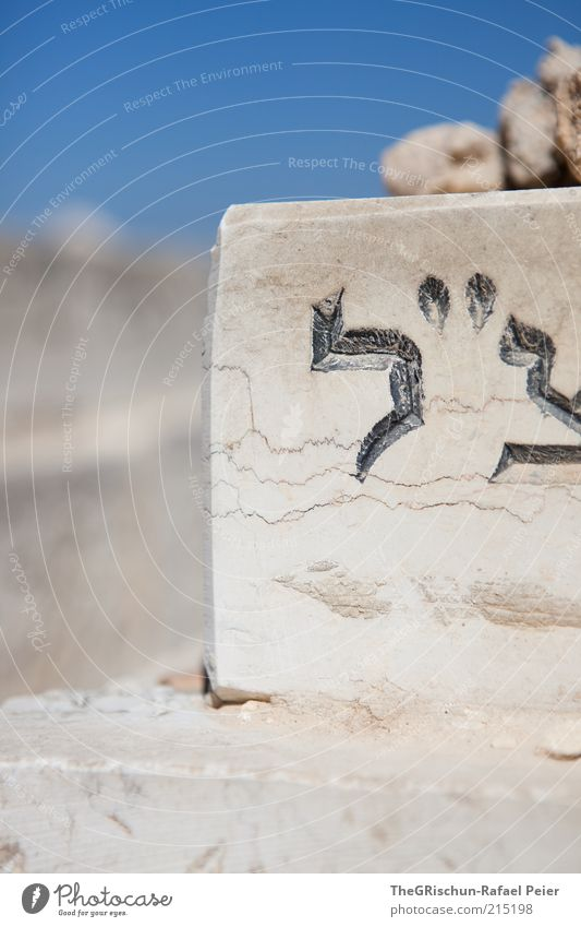 Blue Black Gray Stone Brown Religion and faith Asia Letters (alphabet) Beautiful weather Foreign Cemetery Logo Israel Near and Middle East Tombstone West Jerusalem