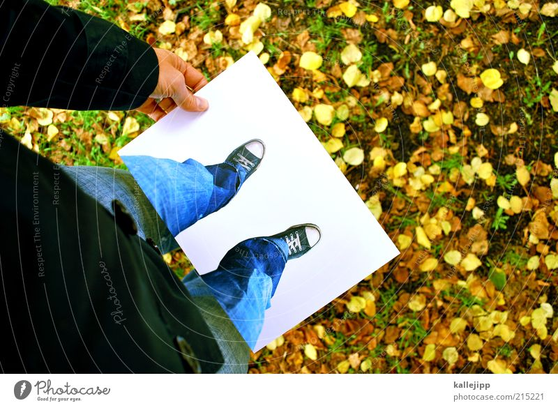 Human being Winter Leaf Life Snow Meadow Autumn Playing Style Legs Feet Ice Art Fashion Leisure and hobbies Lifestyle