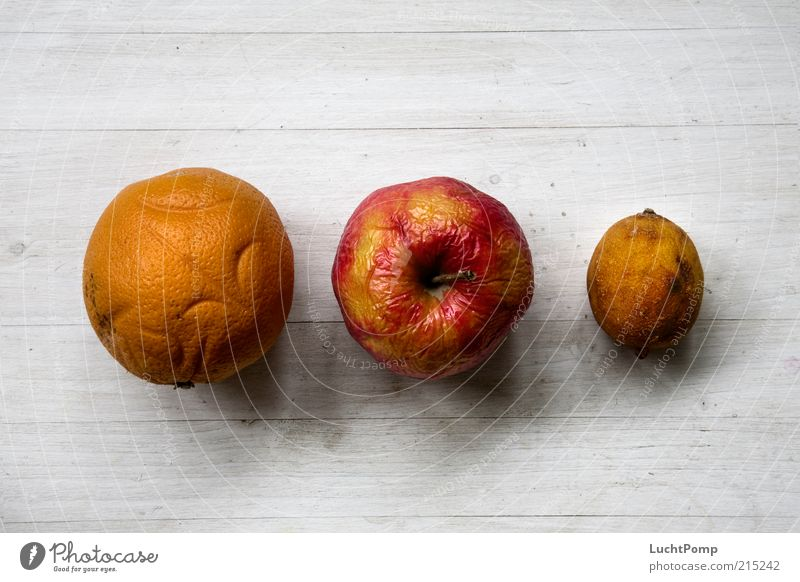 pensioner gang Orange Apple Lemon Wood Multicoloured Old Wizened Spoiled Fruit Shriveled Bird's-eye view Overlaid Red Yellow Yellow-orange Russet Orange-red