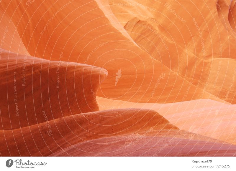 Nature Beautiful Red Brown Orange Rock Exceptional Smooth Detail Light Natural stone Rock formation Warm light Antelope Canyon