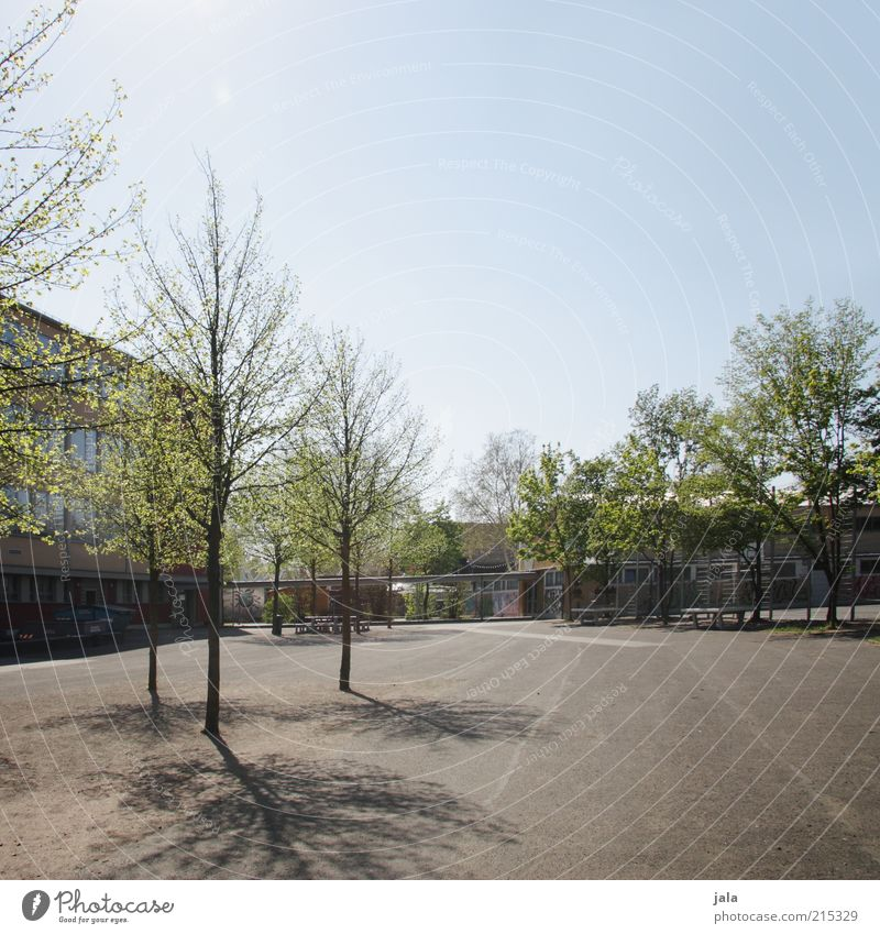 Sky Tree Plant Calm House (Residential Structure) School Building Places Empty School building Manmade structures Beautiful weather Courtyard Cloudless sky